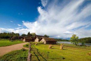 Как выжить в деревне без работы