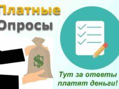 Заработок на платных опросах в интернете