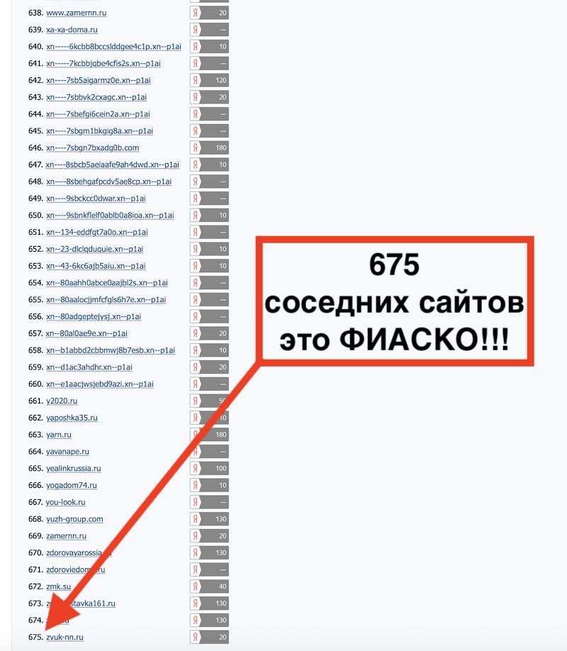 Проверяем хостинг и количество соседних сайтов 2