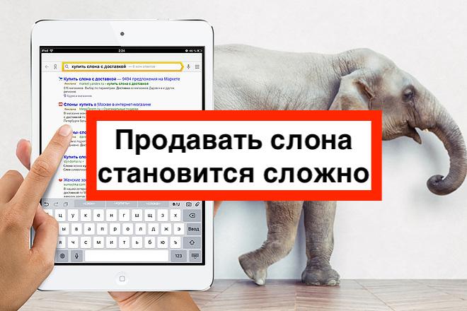 Продвижение сайта в Яндексе в 2022 году